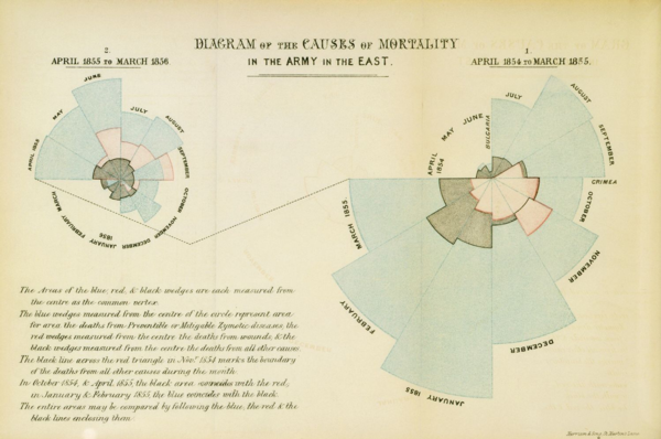 Infographics of Nightingale's Causes of Mortality