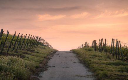 Pixabay-countryside-1835847